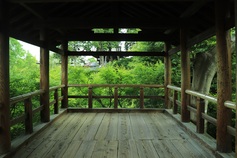 【京都旅行ブログ】2泊3日の京都旅行!新緑の季節の京都#3