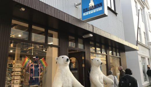 【アイスランド旅行ブログ】中心地で市内散策!アイスランド4泊5日#1