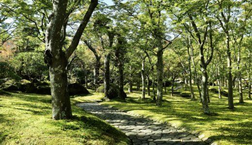 【箱根旅行ブログ】心も体も癒される1泊2日の温泉旅行#2
