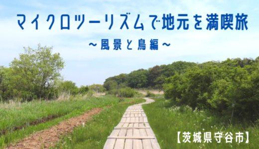 【茨城県守谷市】マイクロツーリズムで地元を満喫旅〜風景と鳥編〜