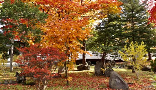 【北海道旅行ブログ】秋の紅葉シーズン!旭川〜美瑛〜帯廣〜札幌を楽しむ3泊4日#1