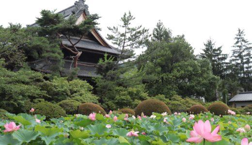 【長野旅行ブログ】長野〜上田で寺社巡り!グルメも満喫した2泊3日#3
