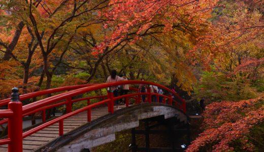 【ほぼ日帰り】群馬で紅葉を満喫!榛名〜伊香保で1泊2日【群馬旅行ブログ】